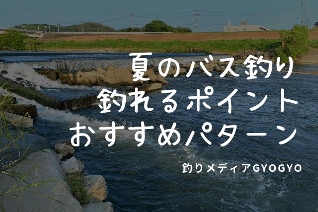 201908-4-hanabi-sm