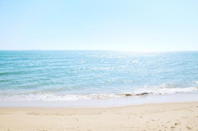 サーフ 砂浜 海岸