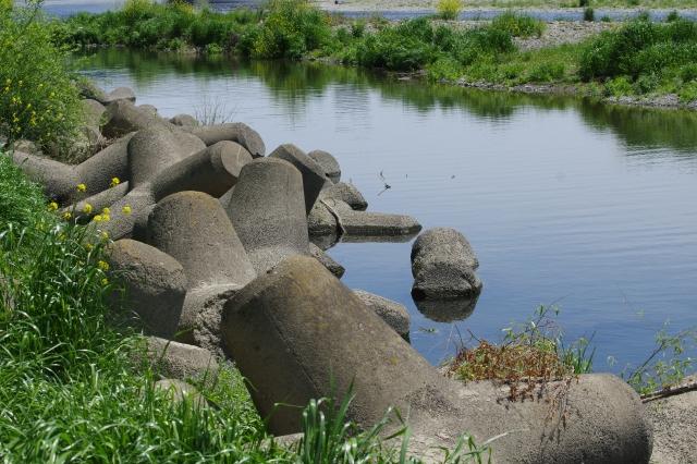 消波ブロック テトラポッド 川