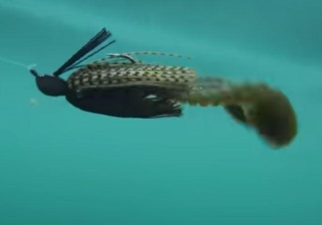 ①圧倒的な強波動による集魚力